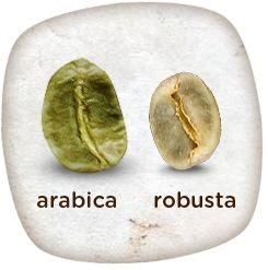 Arabika Robusta